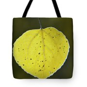 Fall Aspen Leaf Tote Bag