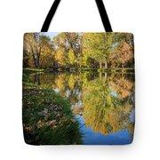 Fall At Ft Buenaventura Tote Bag