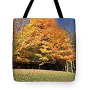 Fall At Kanuga Tote Bag