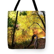 Fall At Lincoln Lake	 Tote Bag