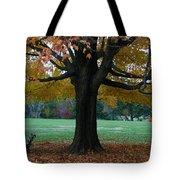 Fall At Maymont Tote Bag