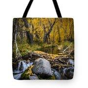 Fall At Mcgee Creek Tote Bag