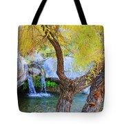 Fall At Murray Falls I Tote Bag