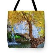 Fall At Murray Falls II Tote Bag