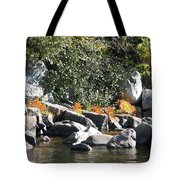 Fall At The Creek Tote Bag