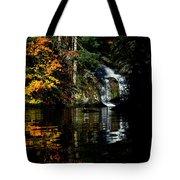 Fall At The Falls Tote Bag