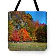 Fall At The Hook Tote Bag