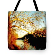 Fall At The Raritan River In New Jersey Tote Bag by Christine Till
