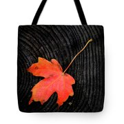 Fall Autumn Leaf On Old Weathered Wood Stump From A Tree Tote Bag