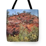 Fall Begins In Zion Tote Bag