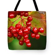 Fall Berries 2 Tote Bag