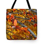 Fall Berries II Tote Bag