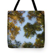 Fall Canopy In Virginia Tote Bag