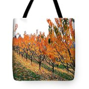 Fall Cherry Orchard Tote Bag