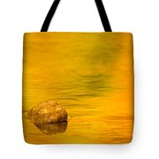 Fall Color Abstract Tote Bag