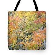 Fall Color At North Lake Tote Bag