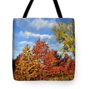 Fall Color Comes To Oak Trees Along Route 31 Tote Bag
