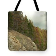 Fall Color Evergreens Tote Bag