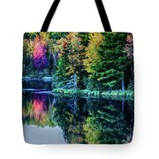 Fall Color Explosion Tote Bag