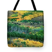 Fall Color In The Eastern Sierras California Tote Bag