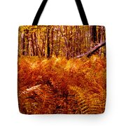 Fall Color In The Woods Tote Bag