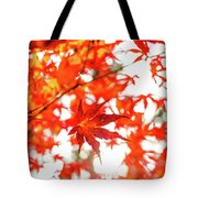 Fall Color Maple Leaves At The Forest In Kochi, Japan Tote Bag