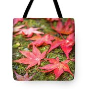 Fall Color Maple Leaves At The Forest In Nikko, Tochigi, Japan Tote Bag