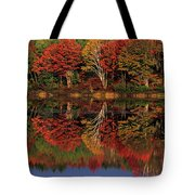 Fall Color Reflected In Thornton Lake Michigan Tote Bag