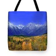 Fall Colored Aspens Grand Tetons Np Tote Bag