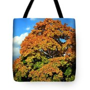 Fall Colors 19 Tote Bag