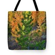 Fall Colors Along Dillon Reservoir Tote Bag