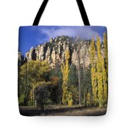 Fall Colors And Red Rocks Near Cave Tote Bag