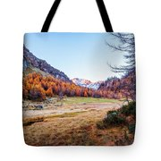 Fall Colors At Alpe Devero Tote Bag