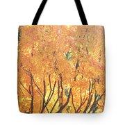 Fall Colors At Cape May Tote Bag