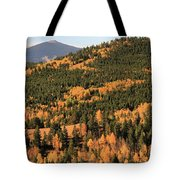 Fall Colors At Rocky Mountain National Park Tote Bag