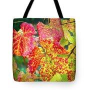 Fall Colors At The Vineyard Tote Bag