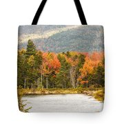 Fall Colors By The Lake Tote Bag