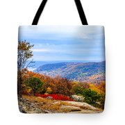 Fall Colors From Bear Mountain Tote Bag