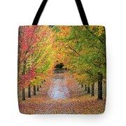Fall Colors In Oregon Tote Bag