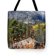 Fall Colors In Rocky Mountain National Park Tote Bag