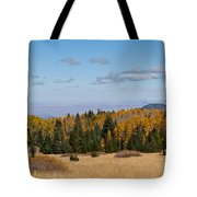 Fall Colors In The Inner Basin Tote Bag