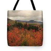 Fall Colors In White Mountains New Hampshire Tote Bag