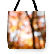 Fall Colors Tote Bag by Les Cunliffe