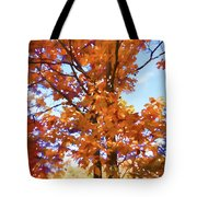 Fall Colors Looking Awesome Tote Bag