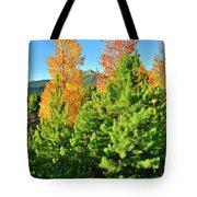 Fall Comes To Dillon Colorado Tote Bag