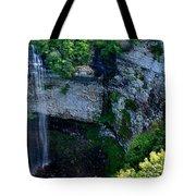 Fall Creek Falls Tote Bag