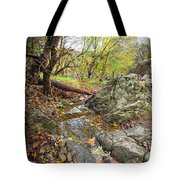Fall Creek View Tote Bag
