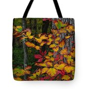 Fall Decorating Tote Bag