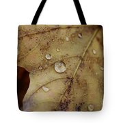 Fall Droplets Tote Bag