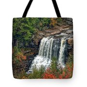 Fall Falls 2 Tote Bag
